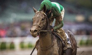 ARCADIA CA - April 9: Exaggerator #2, ridden by Kent Desormeuax wins the Santa Anita Derby on a muddy track at Santa Anita Park on April 9, 2016 in Arcadia, California. (Photo by Alex Evers/Eclipse Sportswire/Getty Images)